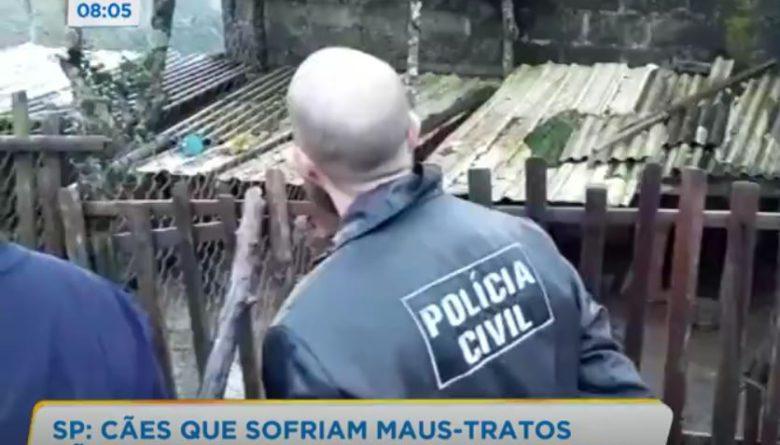 Polícia resgata animais vítimas de maus tratos em canil clandestino de Ibiúna
